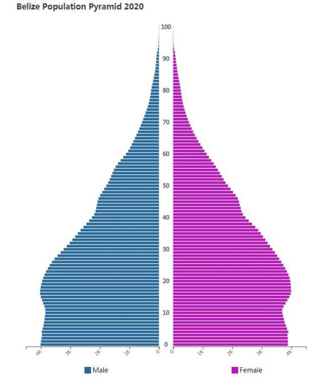 Belize Population Pyramid 2020
