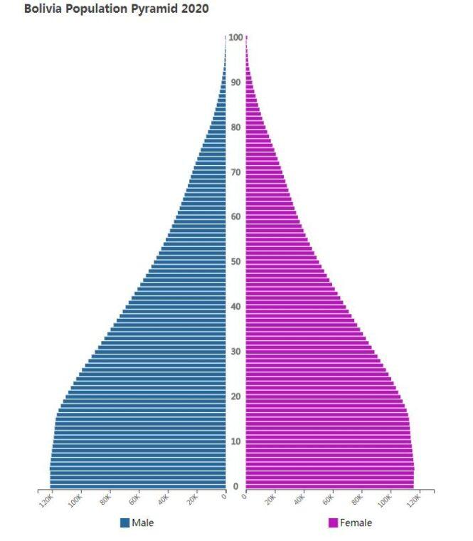 Bolivia Population Pyramid 2020