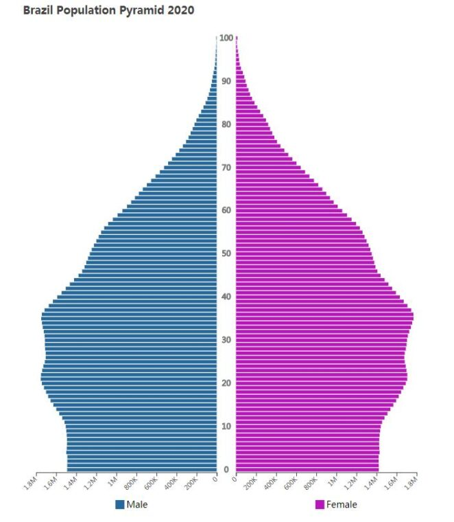 Brazil Population Pyramid 2020