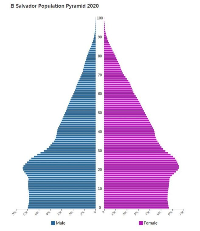 El Salvador Population Pyramid 2020