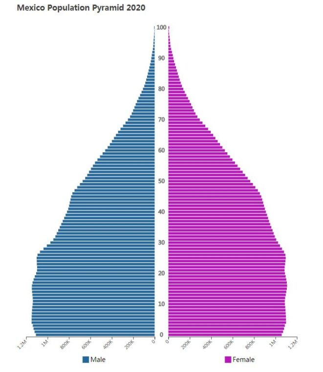 Mexico Population Pyramid 2020