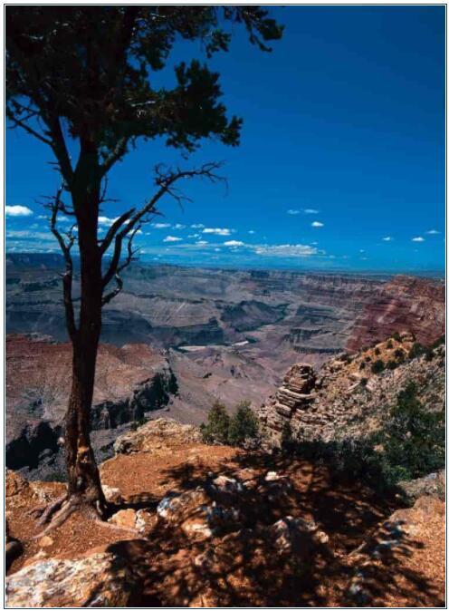 The unique Grand Canyon
