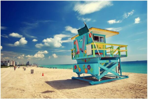 Top 10 Attractions in Miami