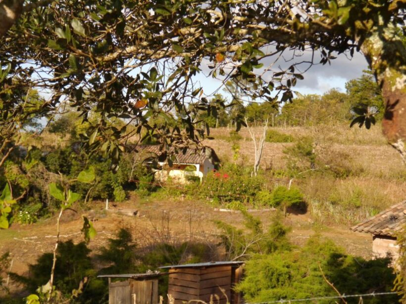 Holidays on coffee fincas are offered by cooperatives in western Honduras