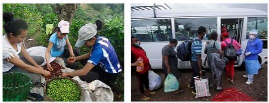 Honduras Economy